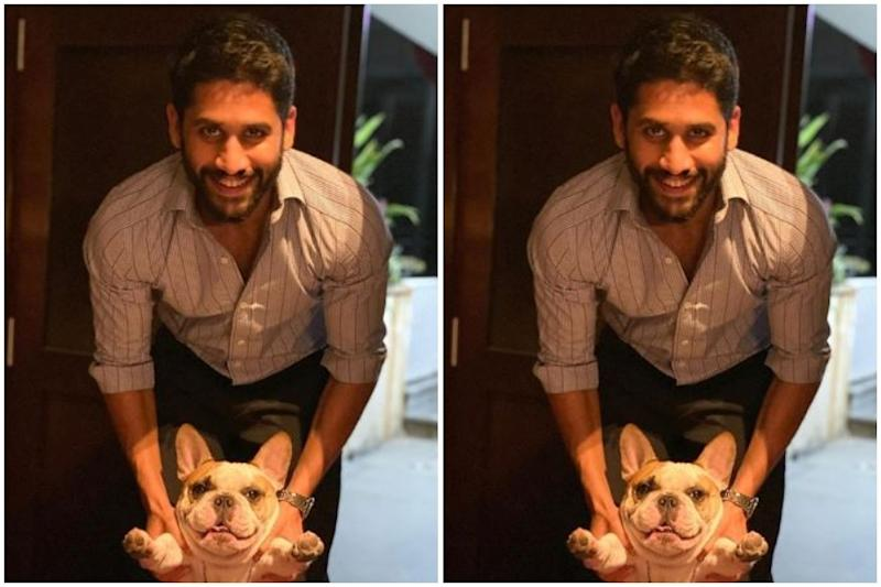 Samantha Akkineni's Instagram Post of Naga Chaitanya with Pet Dog Hash is Too Cute for Words
