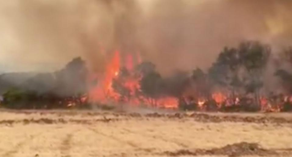 A 'fire tornado' forming on Kangaroo Island. Pictured is a still from a video of the moment.