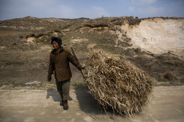 In this April 24, 2013 photo, a North Korean woman pulls a cart on a rural road east of Kaesong, North Korea near the demilitarized zone that separates the two Koreas. (AP Photo/David Guttenfelder)