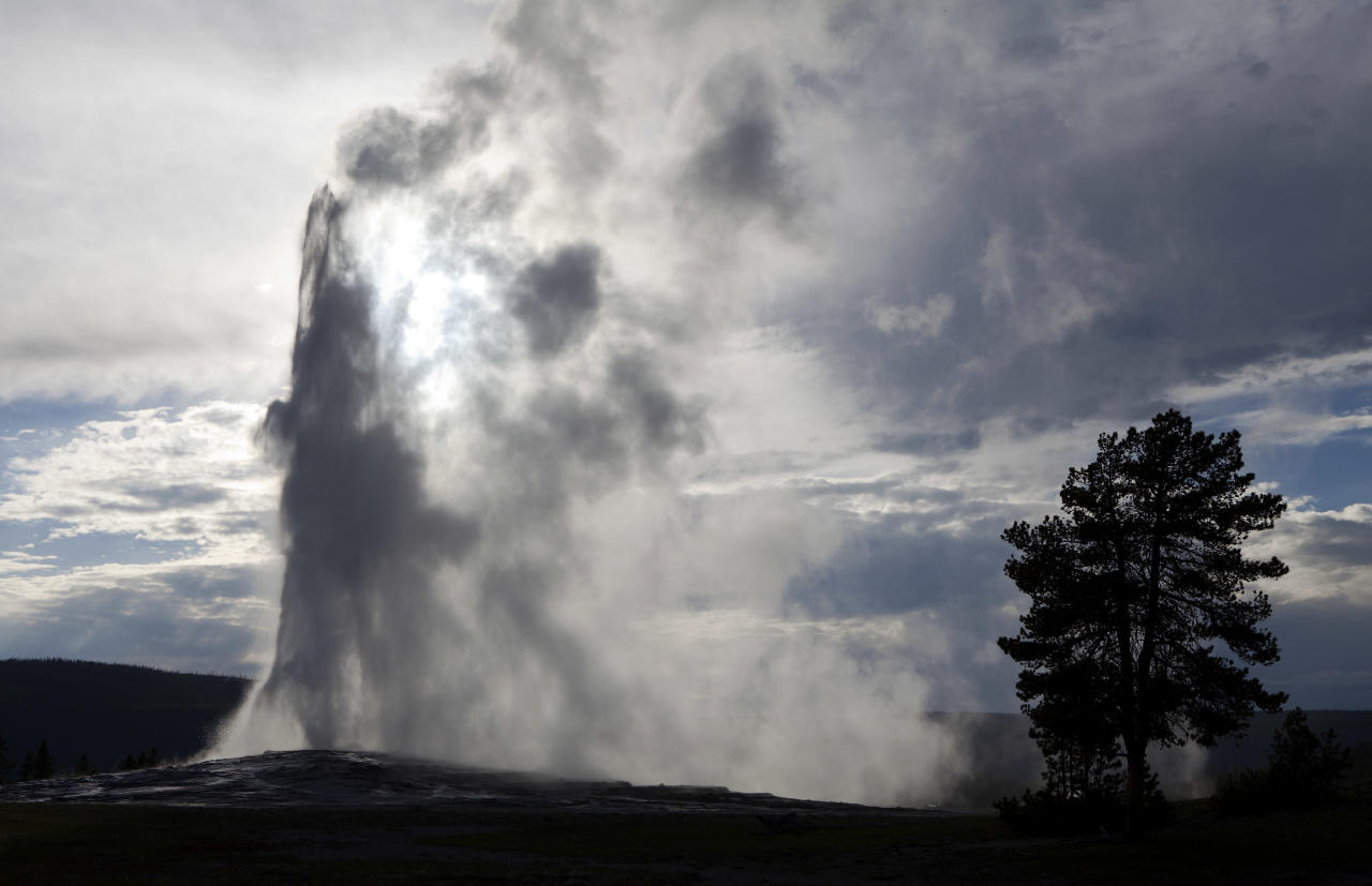 Old Faithful Geyser, the first geyser in the park to be named erupts in Yellowstone National Park, Wyoming, June 22, 2011. Currently the geyser erupts approximately every 90 minutes. REUTERS/Jim Urquhart