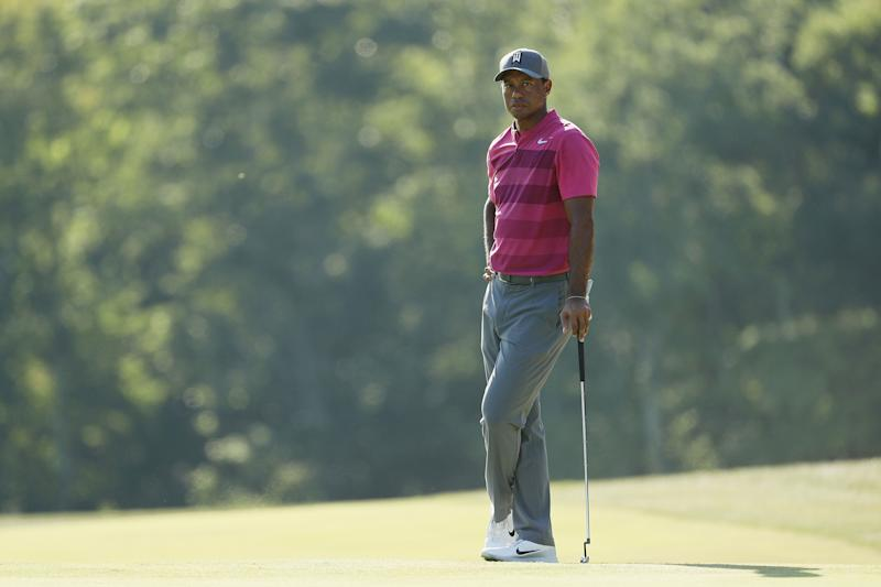 Check out this incredible Tiger Woods doppelganger posing at golf tournament
