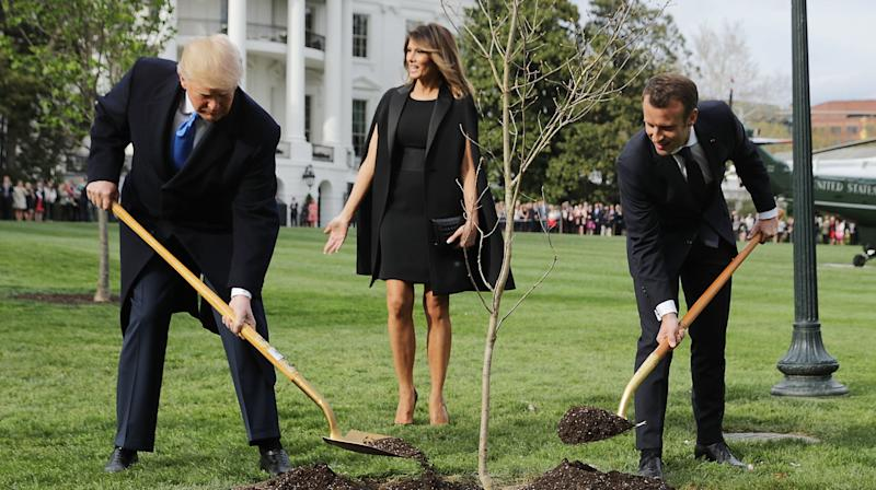 'Tree Hugger' Donald Trump Gets Mauled On Twitter Over Planting Ceremony