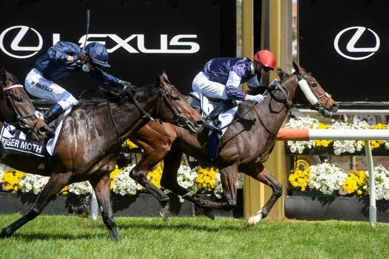 Twilight Payment (R) of Ireland, ridden by Jye McNeil, won the Melbourne Cup at Flemington