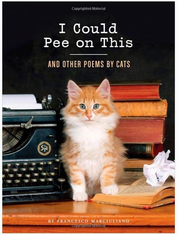 <p>Every feline-lover knows how weird kitties actually are. <span>I Could Pee on This</span> pays homage to your cat's quirks by providing tongue-in-cheek poetry straight from the infamous species. </p>