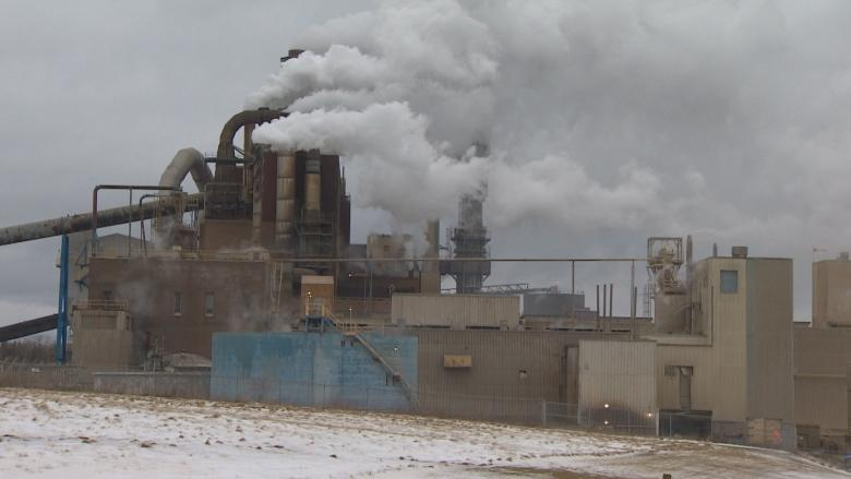 P.E.I. MLAs question N.S. pulp mill officials over wastewater plan