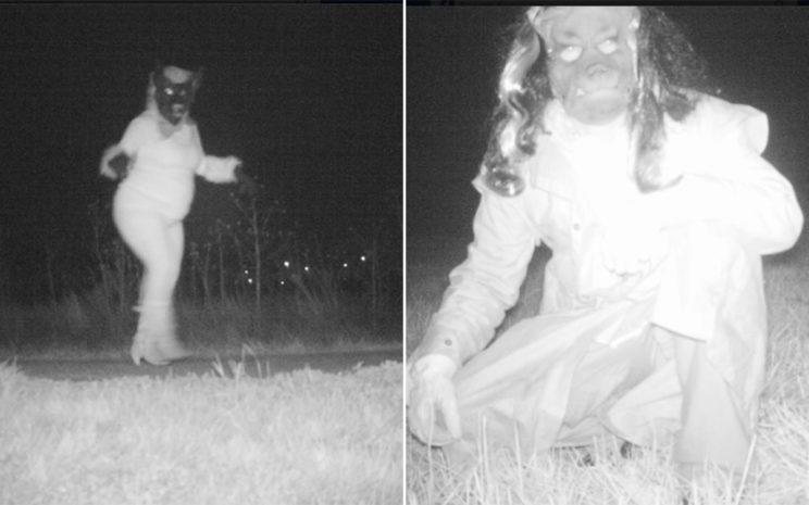 Unusual sight: Animals in coats and high heels were spotted on the cameras (Facebook/Gardner Police Department)