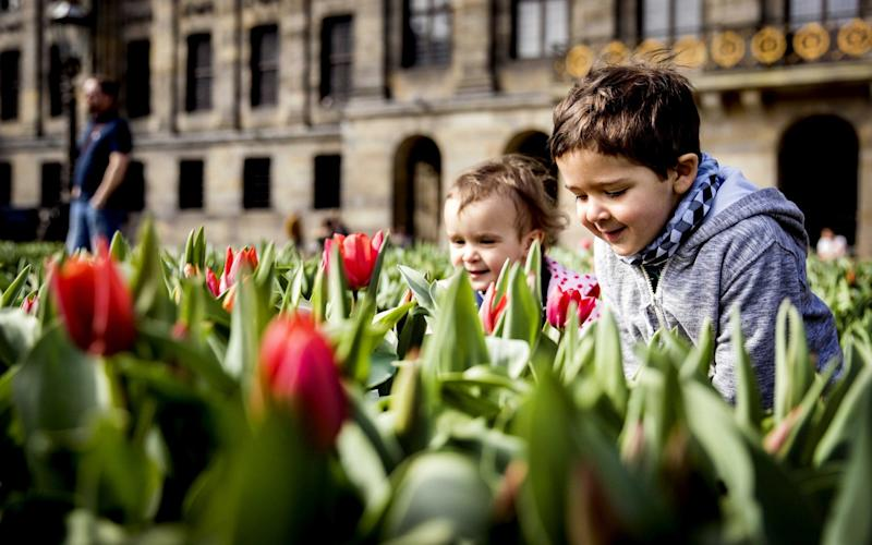 Children play during the official opening of the Amsterdam Tulip Festival - Credit: ANP