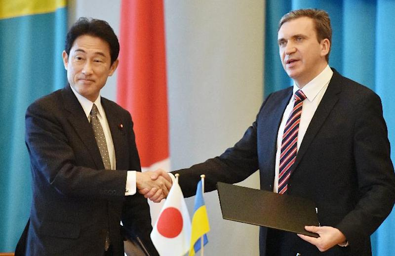 Ukraine's Economy and Trade Minister Pavlo Sheremeta (R) shakes hands with Japanese Foreign Minister Fumio Kishida during a meeting in Kiev on July 17, 2014