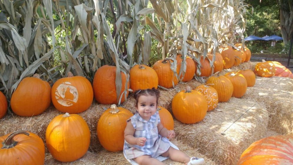 "<p>Dream was happy to make the trek to a pumpkin patch <a rel=""nofollow"" href=""https://twitter.com/robkardashian?ref_src=twsrc%5Egoogle%7Ctwcamp%5Eserp%7Ctwgr%5Eauthor"">with dad Rob Kardashian</a>. Naturally, she wore gingham. (Photo: Twitter/Rob Kardashian) </p>"