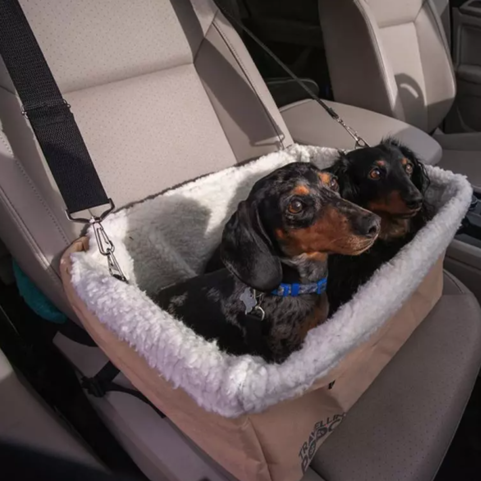 "<p>This doggy car seat gives your pet a boost — so they can see out the window — while also keeping them safe.</p> <p><strong>Buy it!</strong> Dog Car Safety Seat, $54.00; <a href=""https://www.alphapaw.com/products/dog-car-safety-seat"" rel=""nofollow noopener"" target=""_blank"" data-ylk=""slk:AlphaPaw.com"" class=""link rapid-noclick-resp"">AlphaPaw.com</a></p>"