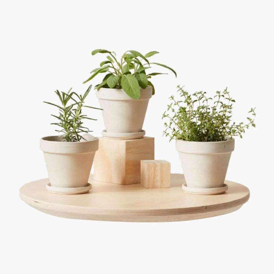 """$65, BLOOMSCAPE. <a href=""""https://bloomscape.com/product/aromatic-herbs-collection/"""" rel=""""nofollow noopener"""" target=""""_blank"""" data-ylk=""""slk:Get it now!"""" class=""""link rapid-noclick-resp"""">Get it now!</a>"""