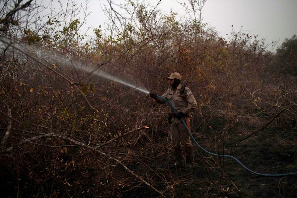 A firefighter tackles one of the fires in the region - getty
