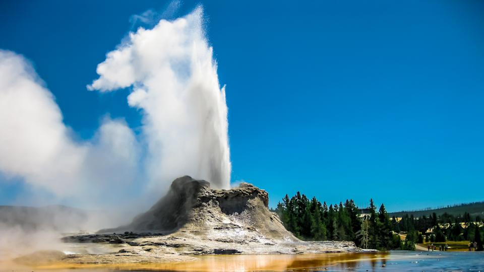 Castle Geyser erupts with hot water and steam with pools of thermophilic bacteria and it's a cone geyser in the Upper Geyser Basin of Yellowstone National Park, Wyoming, United States.