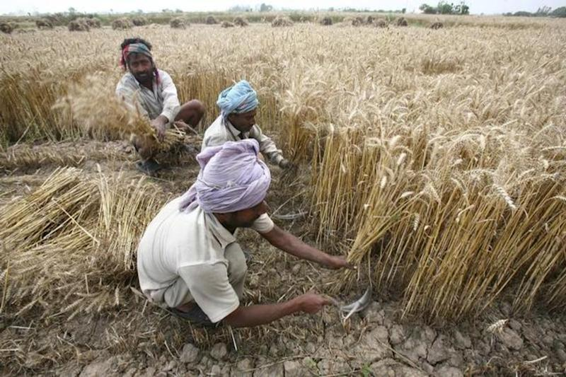 How Will You Spend Rs 25 Trillion on Agriculture, Double Farm Incomes by 2022, India Asked at WTO
