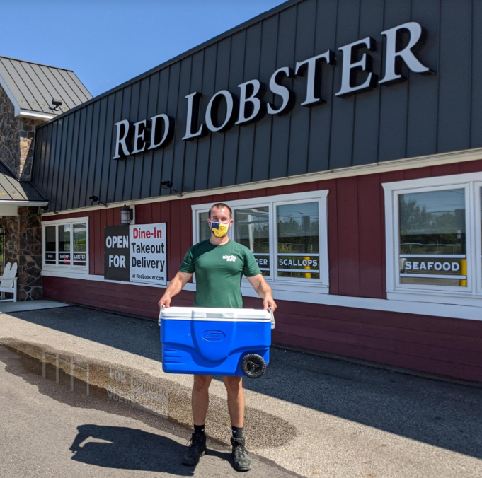 Akron Zoo keeper Scott Heidler picks up a rare blue American lobster from the Red Lobster restaurant in Cuyahoga Falls.