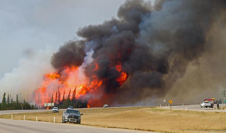 Climate-related disasters taking bigger bites out of Canada's economy: Report