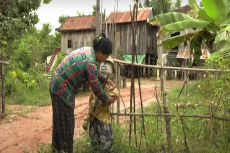 Fighting the Evil: Cambodian Farmers Deploy Age-old 'Ting Mong' Scarecrows to Ward off Virus