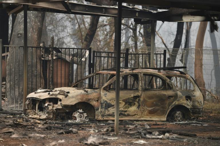Large parts of Australia have been ravaged by bushfires (AFP Photo/PETER PARKS)