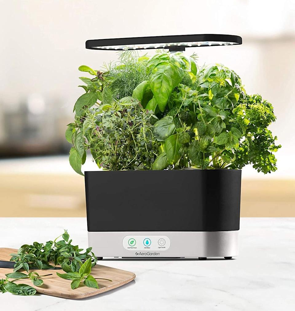 """Grow your own herbs to take your recipes to the next level — even if you don't have a green thumb.<br /><br /><strong>Promising review:</strong>""""I purchased this as a Christmas gift for my boyfriend's sister-in-law who lamented not having a green thumb. In the two months that the sis-in-law has had the AeroGarden, the growth has been tremendous. I'm constantly in awe when she sends me pics of the new growth."""" —<a href=""""https://www.amazon.com/dp/B07CKK8Z78?tag=huffpost-bfsyndication-20&ascsubtag=5817703%2C17%2C43%2Cd%2C0%2C0%2C0%2C962%3A1%3B901%3A2%3B900%3A2%3B974%3A3%3B975%3A2%3B982%3A2%2C16175972%2C0"""" target=""""_blank"""" rel=""""noopener noreferrer"""">Mary A. Walls</a><br /><br /><strong>Get it from Amazon for <a href=""""https://www.amazon.com/dp/B07CKK8Z78?tag=huffpost-bfsyndication-20&ascsubtag=5817703%2C17%2C43%2Cd%2C0%2C0%2C0%2C962%3A1%3B901%3A2%3B900%3A2%3B974%3A3%3B975%3A2%3B982%3A2%2C16175972%2C0"""" target=""""_blank"""" rel=""""noopener noreferrer"""">$119.99</a> (available in three colors).</strong>"""