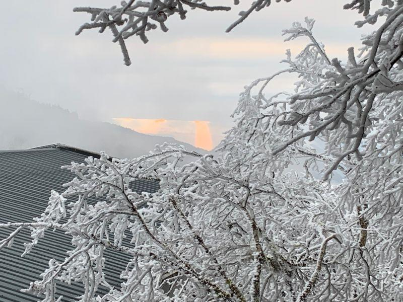 The first snowfall in 3 years at Taipingshan. (Photo courtesy of Taipingshan National Forest Recreation Area)