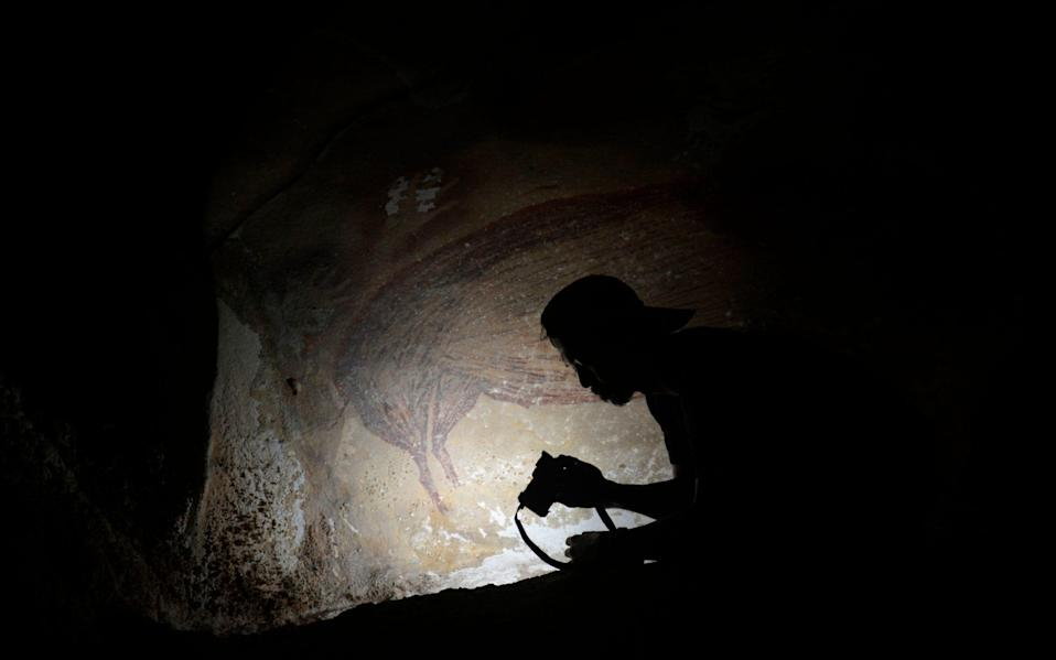 This undated handout photo shows a dated pig painting at Leang Tedongnge in Sulawesi, Indonesia - ADHI AGUS OKTAVIANA/AFP