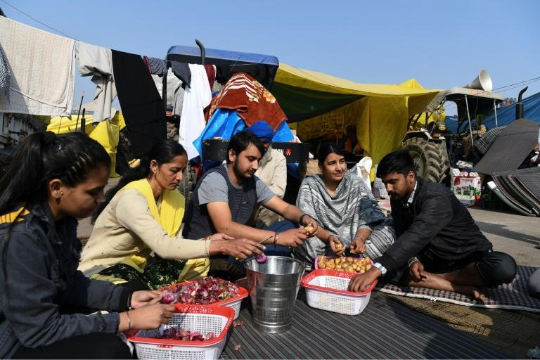 Kaur spends her days at rallies, and in the evenings helps cook food for the tens of thousands of protestors in camps blocking the roads into New Delhi