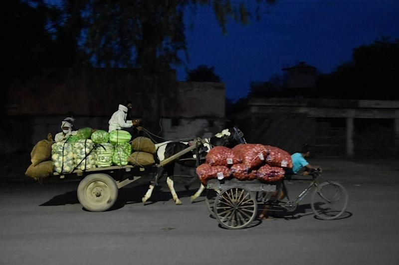 Magician Forced to Sell Vegetables in Dingy Lanes of Rajasthan Amid Covid-19 Lockdown