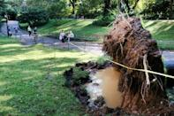 A fallen tree is blocked off in Central Park following a night of heavy wind and rain from the remnants of Hurricane Ida on September 02, 2021 in New York City (AFP/SPENCER PLATT)