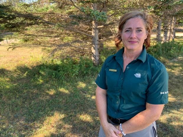 Tara McNally MacPhee, visitor experience manager for P.E.I. National Park, says she thinks there is pent-up demand from people to come to the Island's beaches and relax.