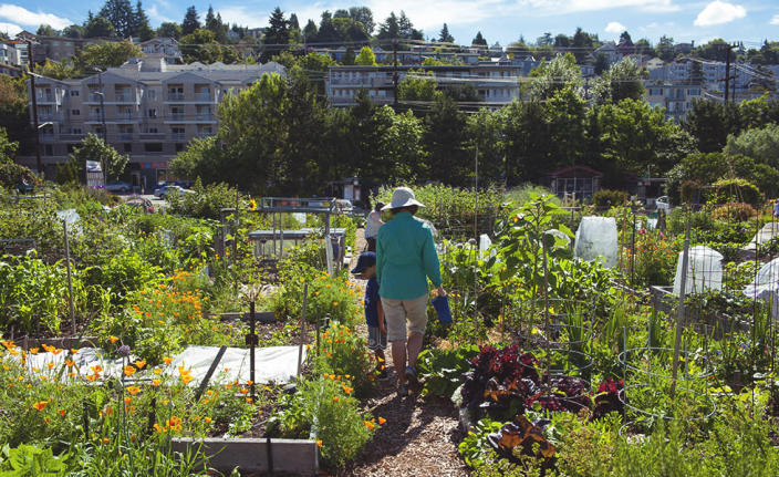 Agrihoods Give the Commune a Suburban-Living Makeover