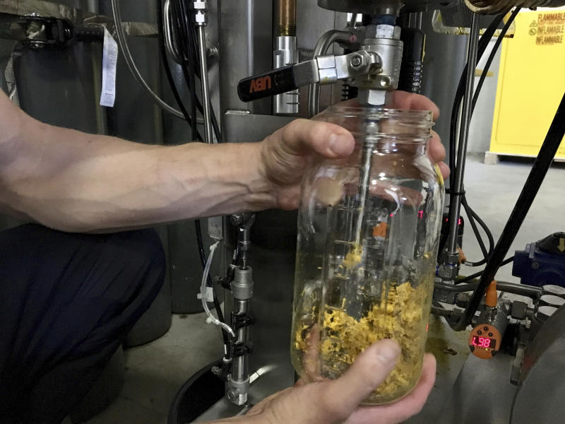 In this Tuesday, July 2, 2019 photo, Brent Steffensen, a hemp extractor at the processing facility Wasatch Extraction, uses a machine to extract fats, waxes and lipids from a raw hemp plant that are not used in CBD oil. Industrial hemp, a non-psychoactive cousin of marijuana, was legalized in Utah last year. (AP Photo/Morgan Smith)