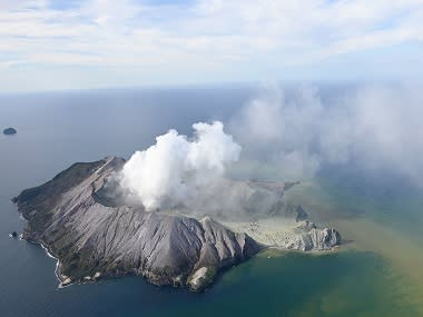 Five dead, 8 missing after volcano eruption off New Zealand coast leaves 'no signs of life' on White Island
