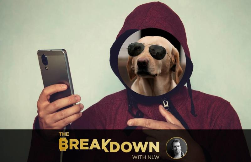 What Satoshi Understood: Nobody Knows You're a Dog on Social Media, Feat. The Crypto Dog