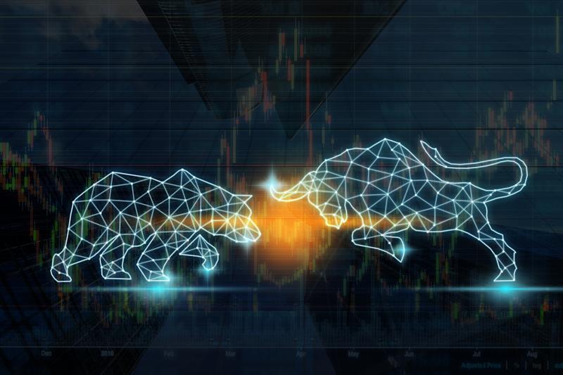 Digital wireframe rendering of a bull and bear doing battle