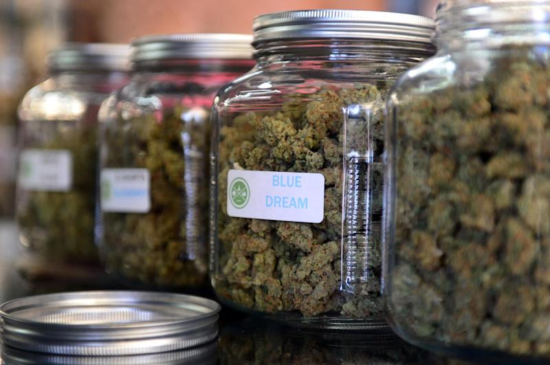 The highly-rated strain of medical marijuana 'Blue Dream' is displayed among others in glass jars at LA's first-ever cannabis farmer's market on July 4, 2014 in Los Angeles, California (AFP Photo/Frederic J. Brown)