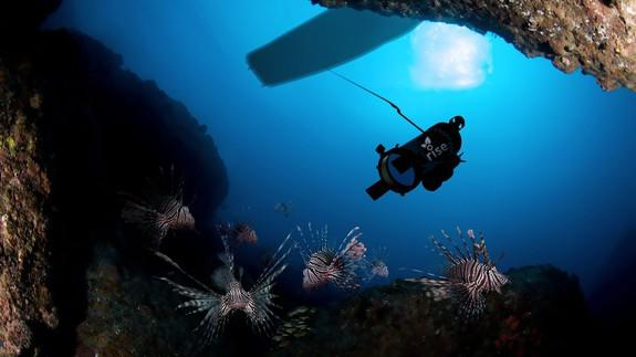 "<img alt=""""/><p>Undoing man's folly is, sometimes, a robot's work.</p> <p>Unwittingly introduced to the Atlantic Ocean over a quarter of a century ago, the lionfish, which is native to the Pacific, is responsible for an ecological disaster of epic proportions in the Caribbean, Bermuda's, and off the shore of Florida coast, and it's spreading up the coast.</p> <p>A complete lack of predators, voracious appetite and ability to reproduce at an astonishing rate has resulted in a mushrooming lionfish population that is decimating ecosystems, coral reefs and the fishing business. </p> <div><p>SEE ALSO: <a rel=""nofollow"" href=""http://mashable.com/2015/09/08/lionfish-invasion/?utm_campaign=Mash-BD-Synd-Yahoo-Science-Full&utm_cid=Mash-BD-Synd-Yahoo-Science-Full"">A fish that doesn't belong is wreaking havoc on our ocean</a></p></div> <p>Catching and eating lionfish, which are delicious, sounds like a reasonable solution, but the fish can't be netted, and are generally fished one person and one spear at a time. If fisherman can't catch lionfish en masse, they can't sell them at quantities to food stores and restaurants. Supply creates demand, which generates more demand that fisherman can supply.</p> <p>If they can figure out how to catch the fish.</p> <p>RISE, which stands for Robots in Service of the Environment, has come up with a very 21st century solution to the lionfish disaster: robots.</p> <p>""Erika and I love diving and, through diving, became increasingly aware of the crisis,"" said Colin Angle who co-founded RISE with his wife Erika. Angle is also the co-founder and CEO of <a rel=""nofollow"" href=""http://mashable.com/category/irobot/?utm_campaign=Mash-BD-Synd-Yahoo-Science-Full&utm_cid=Mash-BD-Synd-Yahoo-Science-Full"">iRobot</a> (<a rel=""nofollow"" href=""http://mashable.com/2017/03/15/irobot-roomba-alexa-voice-command-cleaning/?utm_campaign=Mash-BD-Synd-Yahoo-Science-Full&utm_cid=Mash-BD-Synd-Yahoo-Science-Full"">Roomba</a> robot vacuum, <a rel=""nofollow"" href=""http://mashable.com/2012/07/17/military-robot/?utm_campaign=Mash-BD-Synd-Yahoo-Science-Full&utm_cid=Mash-BD-Synd-Yahoo-Science-Full"">Packbot</a> military robot).</p> <p>On one dive, their boat captain challenged Angle, ""Okay, you build robots, build one to go hunt lionfish.""</p> <p>This was not as crazy of an idea as it sounds and Angle had already been wondering ""if there was still a way to use robot technology to solve larger environmental problems and maybe more proactively than merely sending our defense robots to natural disaster zones.""</p> <p><img title=""The Lionfish challenge"" alt=""The Lionfish challenge""></p> <p>The Lionfish challenge</p><div><p>Image:  rise</p></div><p>Robots for good sounds cheesy, but there were more practical considerations. Could, Angle wondered, a robot even do the job and could it do it at scale?</p> <p>""Spending half a million dollars to build a robot that kill 10 lionfish is absurd,"" he told me.</p> <p>Angle shared a few details of the robot they built and that will make its public debut next month. They started with fresh-water electro fishing technology and adapted it for salt water. The robot stuns, but doesn't kill the lionfish and then it sucks them into the robot. It does this over and over again, until full of unconscious fish and then rises to the surface where a fisherman can unload the catch and deliver them to waiting restaurants and food stores.</p> <p>""Ultimately, the control of this device is like a PlayStation game: you're looking at screen and using a joystick controller. Zap it, catch it, do it again, said RISE Executive Director John Rizzi who told me that a team of unpaid volunteers have been working on the prototype for over a year. They also got some seed funding from The Angle Family, Schmidt Marine Technology Partners and the Anthropocene Institute.</p> <h2>Stunning, eating and feeding brains</h2> <p>RISE is a two-pronged effort: slow damaging growth of the lionfish population <em>and</em> create a rich curriculum around this and future RISE work that can be used in American middle schools.</p> <p>Erika Angle, herself a biochemist, has spent a decade working with the non-profit <a rel=""nofollow"" href=""http://www.sciencefromscientists.org/"">Science from Scientist</a>, which brings real scientists into classrooms where they not only talk about their work, but offer hands-on science demonstrations.</p> <p>""It's such an integral part of RISE mission...We're trying to reach these kids with knowledge. Ultimately, we're going to be relying on these kids to save planet for next generation,"" said Erika Angle. </p>  <p>RISE will, she said, build a curriculum around the RISE lionfish robot that can go anywhere in the country. While there's currently no plan for a practical lesson, like going on a boat and piloting one of the robot-catching fish, that could happen in the future.</p> <p>For now, though, the biggest demonstration of the RISE's lionfish hunter will happen in Bermuda on April 19, as part of the America's Cup festivities. There'll even been a celebrity chef lionfish cook-off, the 11th Hour Racing #EatLionfish Chef's Throwdown. All of it designed to help launch RISE's Kickstarter project, which Colin Angle hopes can help raise funds to further developer, build and deliver these robots to commercial fishermen and woman at about $500-to-$1,000 each.</p> <p>What if the robot is so effective, it wipes out the lionfish in the Atlantic?</p> <p>""That's a perverse reality you can worry about, but we're confident that the lionfish can reproduce so quickly [one fish produces 30,000-to-40,000 eggs every few days] that it would be hard to eliminate them,"" said Rizzi.</p> <p>Colin, though, reminded me that that's still the goal. ""This is an invasive species,"" he said. A significant reduction in lionfish numbers would help the fish and reef ecosystem to recover.</p> <p>There is another benefit to using robots like this to solve ecological problems. ""Unlike biological systems that once you deploy are out of your control, this one you can simply turn off,"" said Angle.</p> <div> <h2>WATCH: Invasion of the lionfish - Part 1 - The threat</h2> <div></div> </div> <p> </p>"