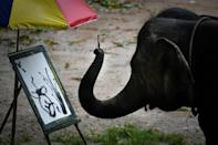 Suda the elephant holds a brush in her trunk and paints Japanese-style landscapes for visitors who can later buy the prints for up to $150