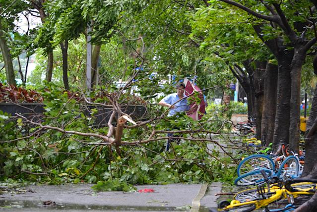 <p>A man walks among tree branches broken by strong winds brought by Typhoon Hato in Shenzhen, Guangdong province, China, Aug. 23, 2017. (Photo: Stringer/Reuters) </p>