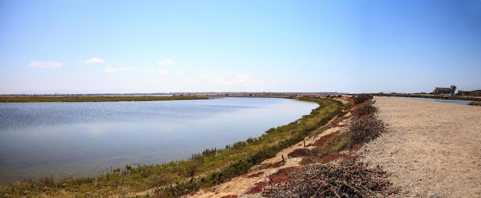"""<p><strong>Give us the wide-angle view: what kind of beach are we talking about?</strong><br> Bolsa Chica is known for a few things: a three-mile long sandy beach that never gets too crowded, a paved biking and jogging path, and the Bolsa Chica Ecological Reserve. The beach itself is miles of fluffy sand, with sandbars that allow you to walk far out into the ocean without getting into deep water. (The sandbars also create perfect conditions for beginner surfing, so there will likely be surfers out on their boards.) At night, because there are 200 designated fire rings, the beach comes alive with barbecuing families and teenagers keeping warm. Across the <a href=""""https://www.cntraveler.com/story/the-most-california-road-trip-ever-pacific-coast-santa-monica-san-simeon?mbid=synd_yahoo_rss"""" rel=""""nofollow noopener"""" target=""""_blank"""" data-ylk=""""slk:Pacific Coast Highway"""" class=""""link rapid-noclick-resp"""">Pacific Coast Highway</a>, the Reserve is a famous spot for birders. There are marshes and ponds where thousands of birds—egrets, herons, ducks, hawks, terns, and even ospreys and eagles—congregate. A trail runs through the Reserve, giving birders and non-birders alike a front row seat to an avian spectacle.</p> <p><strong>How about parking?</strong><br> There are two parking options. If you get there early enough, you can find a spot for free in the Ecological Reserve parking lot, but then you'll have to walk about a mile to find a crosswalk to get to the beach. If you'd rather not hoof it, there's ample parking in the beach area at $15 a day per car.</p> <p><strong>Decent services and facilities, would you say?</strong><br> There are a couple of amenities at Bolsa Chica. There's a visitor center with helpful rangers available to answer your questions. In the summer months, you can get beachy fare like poke, nachos, ceviche, and shrimp tacos at SeaLegs—make sure to reserve one of the picnic areas if you want to have a seat. Plus, there are a few surfing schools along the beac"""
