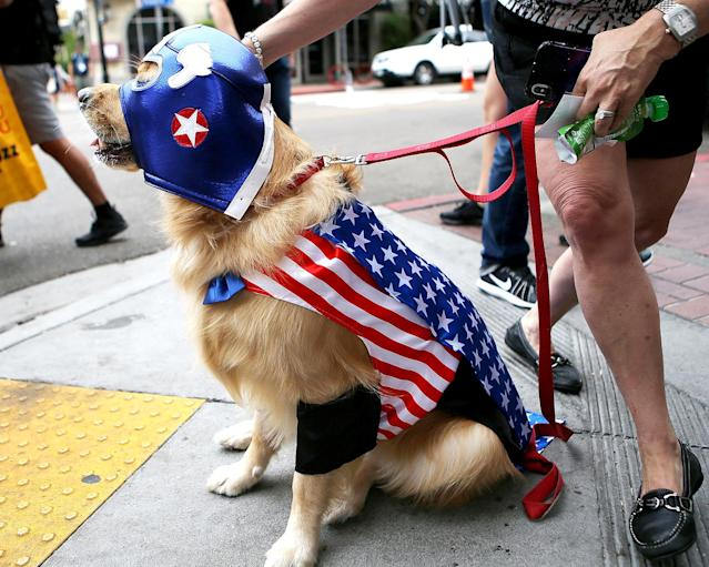 <p>Cosplayer dog as <i>Captain America</i> at Comic-Con International on July 20, 2018, in San Diego. (Photo: Mario Tama/Getty Images) </p>