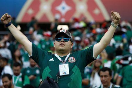Soccer Football - World Cup - Group F - South Korea vs Mexico - Rostov Arena, Rostov-on-Don, Russia - June 23, 2018 Mexico fan celebrates after the match REUTERS/Damir Sagolj