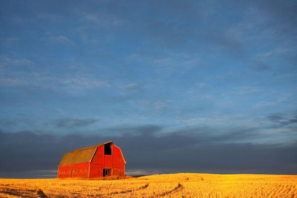 """<p><strong>Where to go:</strong> Take in the gold, red, and brown hues of the plains by going on a fall drive along the Gypsum Hills or Flint Hills Scenic Byways.</p><p><strong>When to go: </strong>Early or Mid-November</p><p><a class=""""link rapid-noclick-resp"""" href=""""https://go.redirectingat.com?id=74968X1596630&url=https%3A%2F%2Fwww.tripadvisor.com%2FHotels-g28937-Kansas-Hotels.html&sref=https%3A%2F%2Fwww.redbookmag.com%2Flife%2Fg34045856%2Ffall-colors%2F"""" rel=""""nofollow noopener"""" target=""""_blank"""" data-ylk=""""slk:FIND A HOTEL"""">FIND A HOTEL</a></p>"""