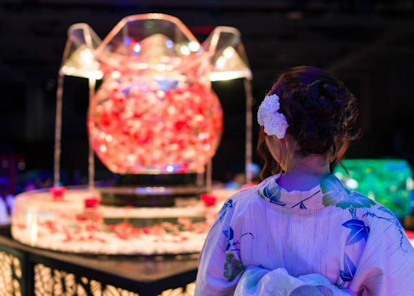 """""""Oiran"""": With more than 1,000 goldfish, this beautiful exhibit changes through seven colors"""