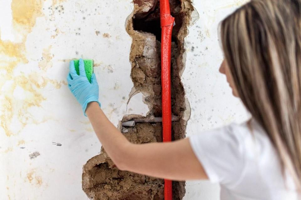 "Finding mold or mildew around your pipes may mean a major repair is in your future. ""Mold growth can point towards a water leak due to a faulty water pipe or water line within the surrounding area,"" explains <a href=""https://indianapolisrestorationpros.com/"" rel=""nofollow noopener"" target=""_blank"" data-ylk=""slk:mold remediation expert"" class=""link rapid-noclick-resp"">mold remediation expert</a>, <strong>Andrew James</strong>, owner of Indianapolis Restoration Pros. James says that mold feeds off of water leaks, so that the longer the leak goes untreated, the more remediation you have in your future."