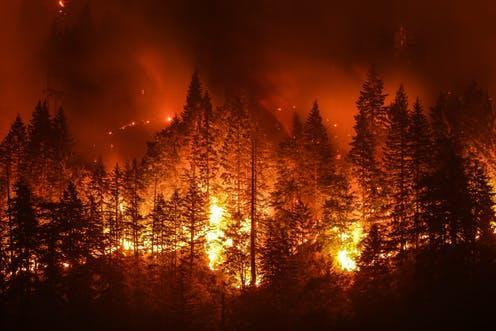 """<span class=""""caption"""">If a forest goes up in smoke, what about the offset?</span> <span class=""""attribution""""><span class=""""source"""">Christian Roberts-Olsen / shutterstock</span></span>"""