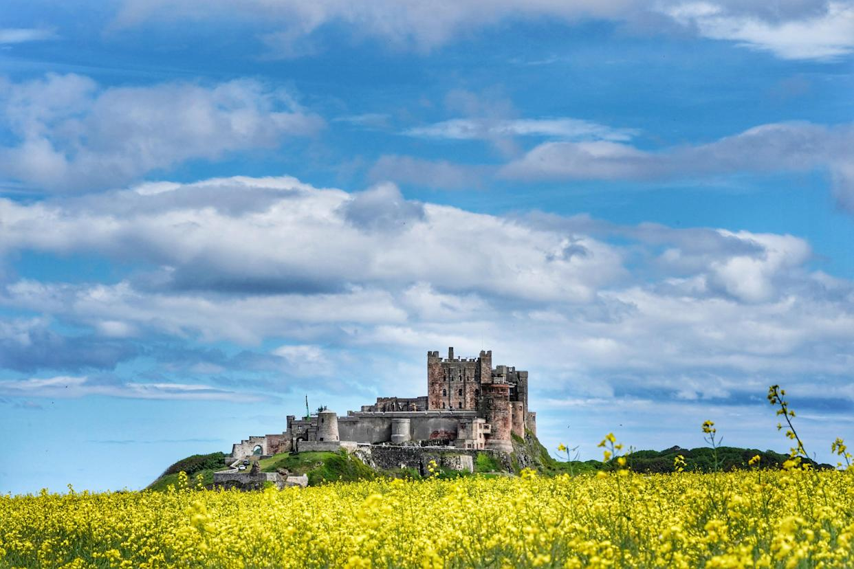 Oil seed rape fields near Bamburgh Castle in Northumberland. Picture date: Wednesday June 9, 2021. (Photo by Owen Humphreys/PA Images via Getty Images)