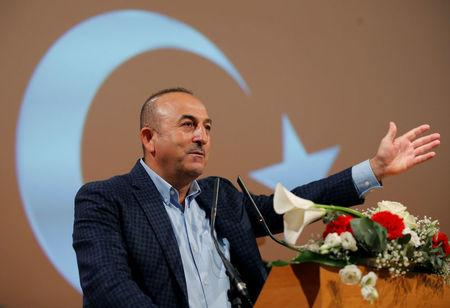 Turkish Foreign Minister Cavusoglu addresses supporters during a political rally on Turkey's upcoming referendum, in Metz