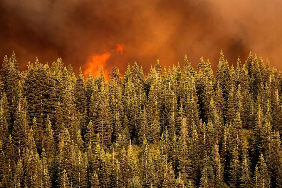 Flames from the Dixie Fire are seen in Lassen National Forest, California.