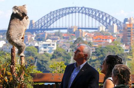 Pence looks at a koala in Sydney