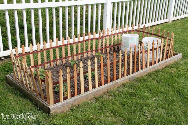 "<p>Use a roll of prefab picket fence and attach chicken wire to the back to make it more attractive. Voila! It's a cheap and easy DIY fence for your garden that looks so much nicer than plain chicken wire. </p><p><strong>Get the tutorial at <a href=""https://www.twotwentyone.net/diy-garden-fencing/"" rel=""nofollow noopener"" target=""_blank"" data-ylk=""slk:Two Twenty One"" class=""link rapid-noclick-resp"">Two Twenty One</a>.</strong></p><p> <a class=""link rapid-noclick-resp"" href=""https://go.redirectingat.com?id=74968X1596630&url=https%3A%2F%2Fwww.lowes.com%2Fpd%2FGreenes-Actual-15-ft-x-2-ft-White-Pine-Spaced-Picket-Garden-Woven-Wire-Rolled-Fencing%2F3120271&sref=https%3A%2F%2Fwww.thepioneerwoman.com%2Fhome-lifestyle%2Fgardening%2Fg32651791%2Fdecorative-garden-fence-ideas%2F"" rel=""nofollow noopener"" target=""_blank"" data-ylk=""slk:SHOP PICKET FENCE ROLLS"">SHOP PICKET FENCE ROLLS</a></p>"
